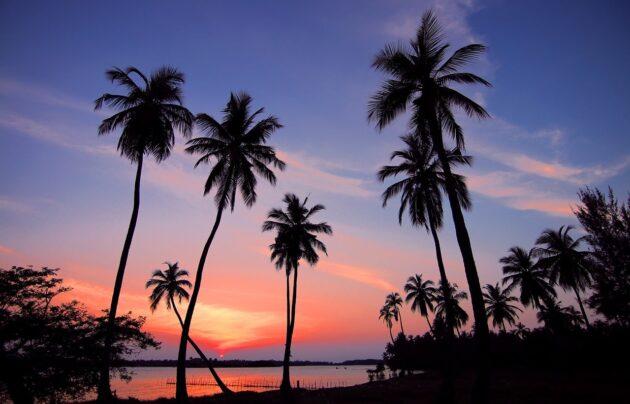 Vacances au Sri Lanka : 8 jours à partir de 578€ par personne (vols A/R + hébergement inclus)