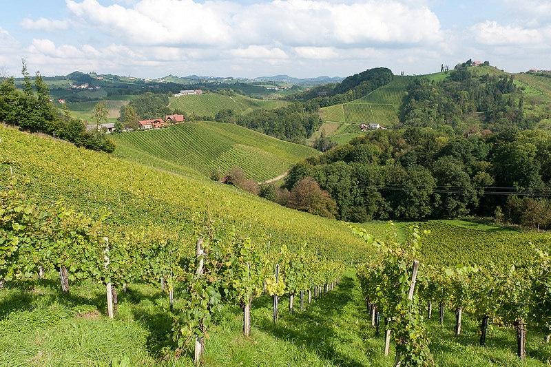 Vignoble de la Toscane Styrienne, Graz