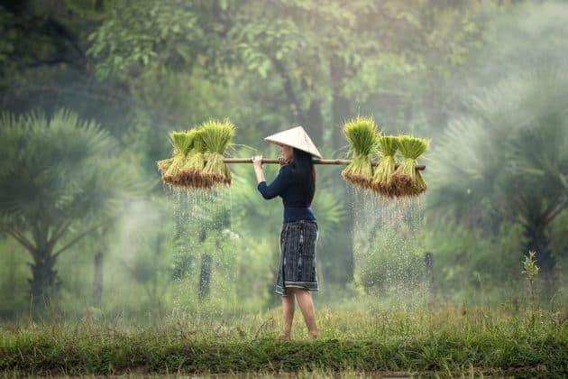 Séjour à Hô-Chi-Minh-Ville à partir de 519€