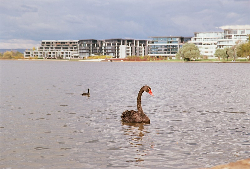 Barton, Canberra