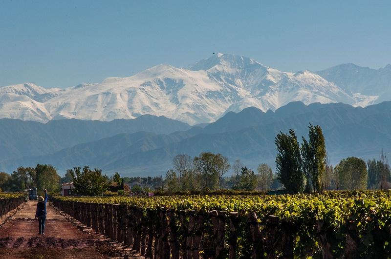 Bodegas, vignoble dans les Andes, Mendoza