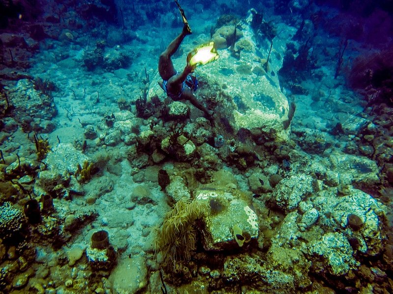 Champagne Reef, Dominique