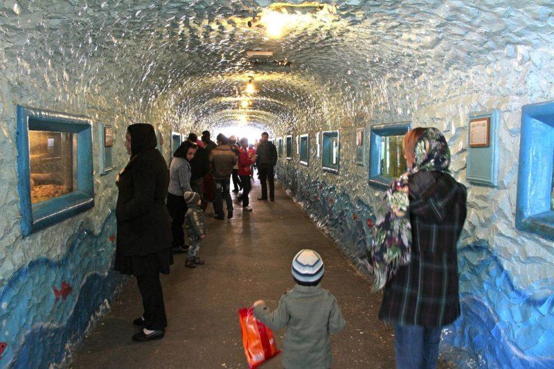 Eram Zoo Park, Téhéran