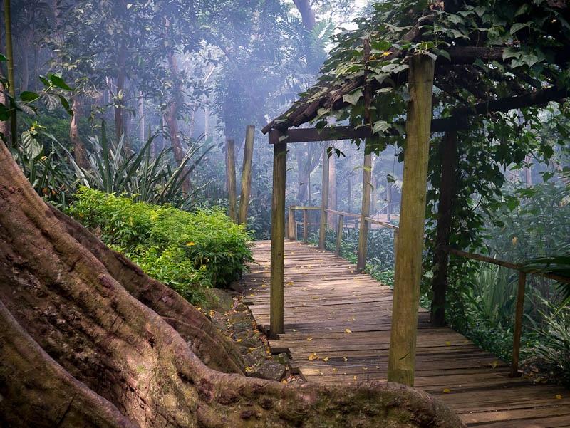 Jardin du Géant Endormi, Fidji
