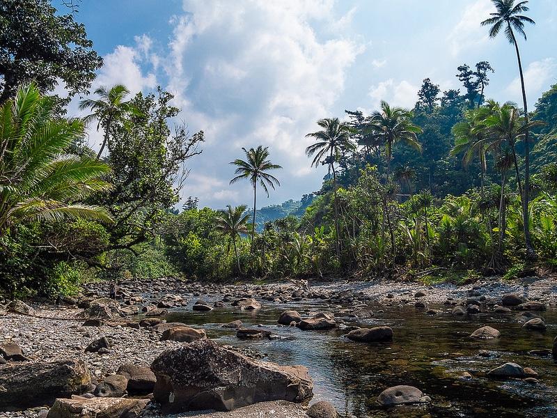 Randonnée promenade à Taveuni, Fidji