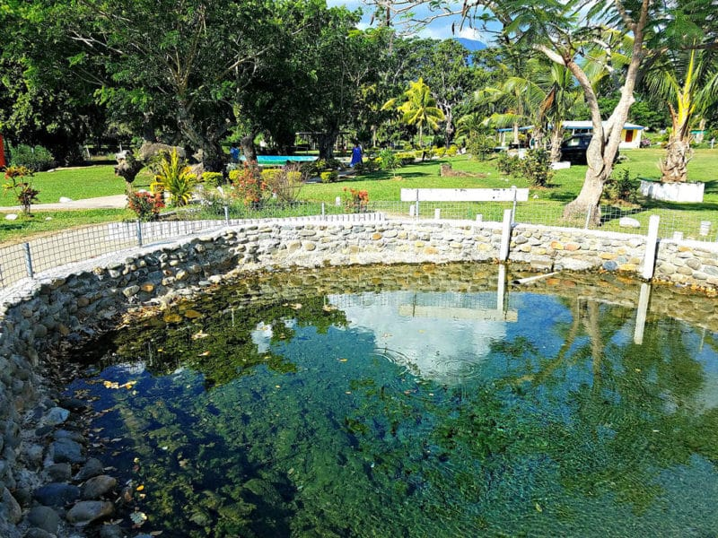 Source d'eau chaude naturelle, Fidji