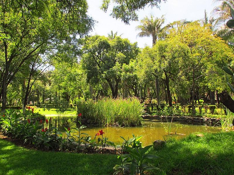 Jardin botanique, Cochabamba