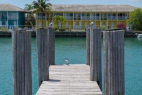 Sur quelle île loger aux Bahamas ?