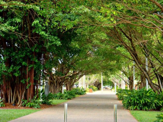 Dans quel quartier loger à Cairns ?