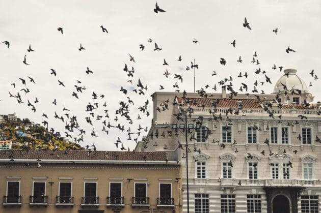 Dans quel quartier loger à Quito ?