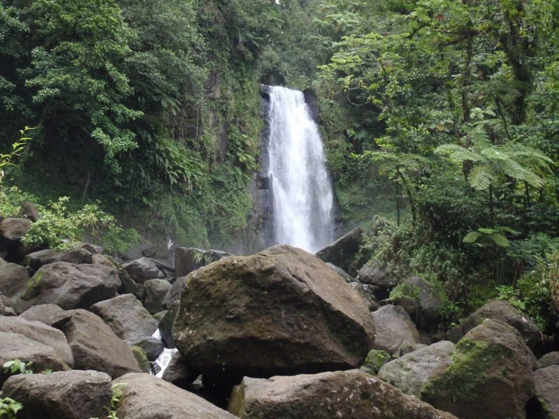 Middleham Waterfalls, Dominique