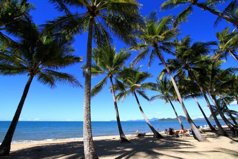 Palm Cove Beach, plage, Cairns