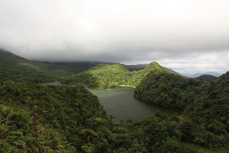 Parc National du Morne Trois Pitons, Dominique