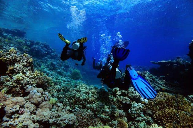 Les 10 plus beaux spots de plongée en Nouvelle-Calédonie