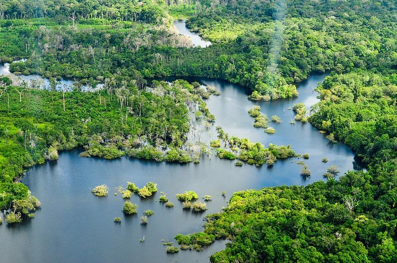 Fleuve Taruma, Manaus