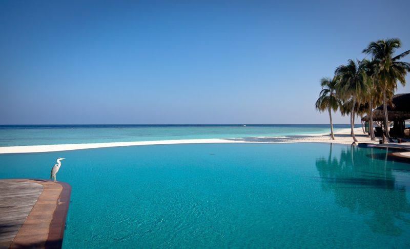 Hôtel à Veligandu, Maldives