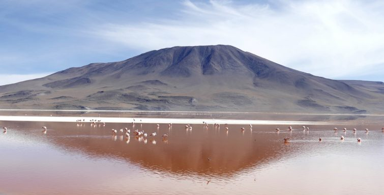Laguna Colorada, Bolivie