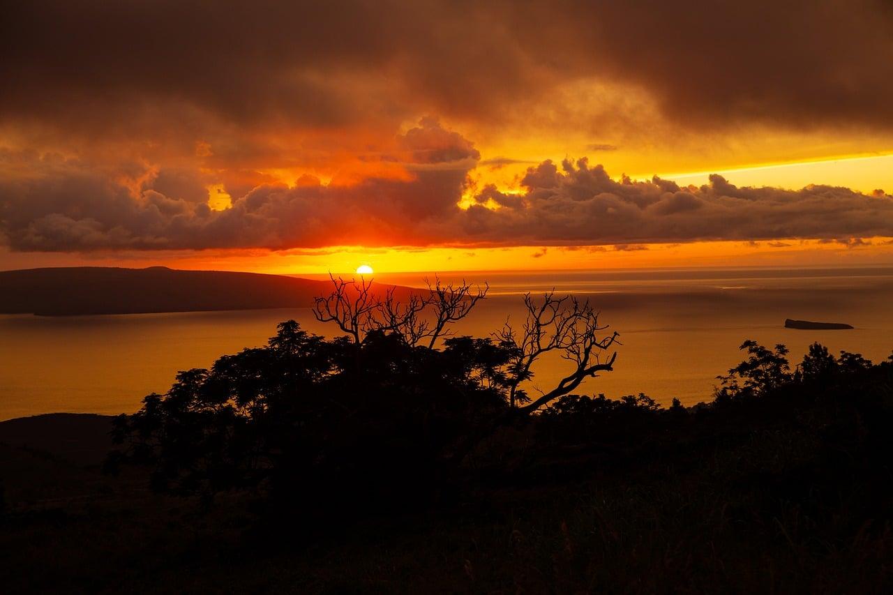 site de rencontre le plus populaire à Hawaii