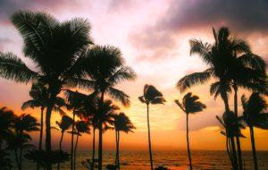 Les 14 choses incontournables à faire à Hawaï