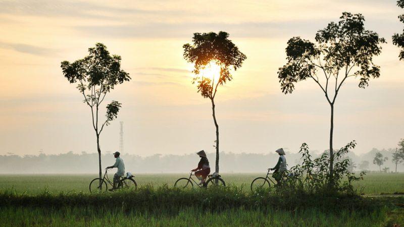 Apprendre l'indonésien : phrases et expressions