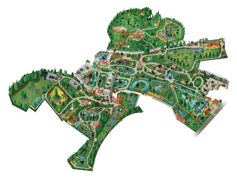 plan-carte-zoo-beauval