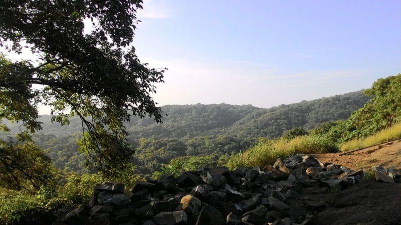 Parc national Sanjay Gandhi, Mumbai