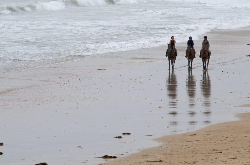 Balade à cheval sur l'île de Ré