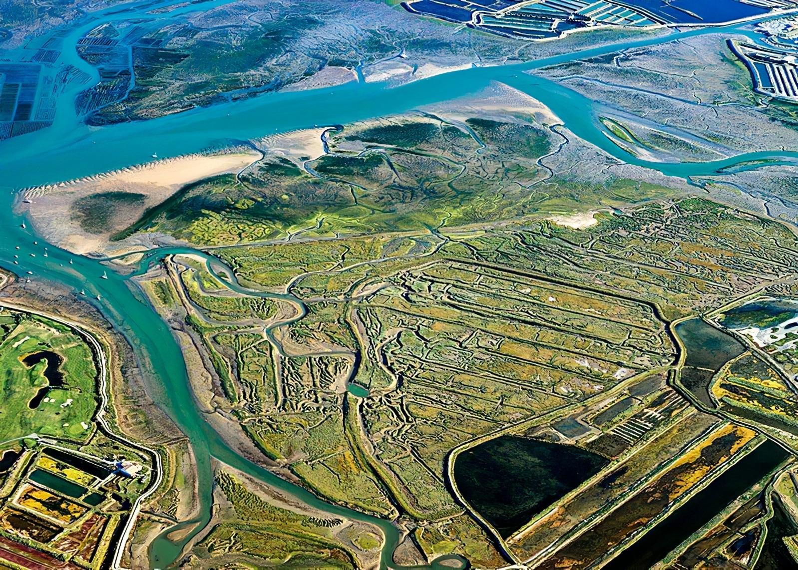 Réserve Naturelle Nationale de Lilleau des Niges