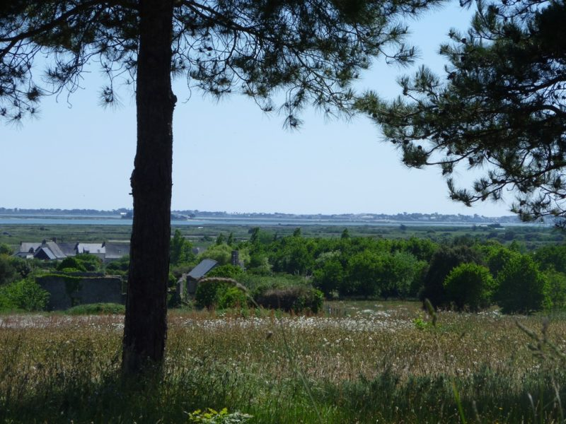 Clis avec au fond les marais salants de Guérande