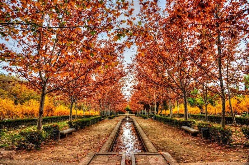 Parque de Las Tres Culturas, Toledo