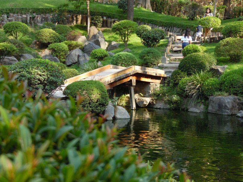 Jardin japonais Los Colomos, Guadalajara