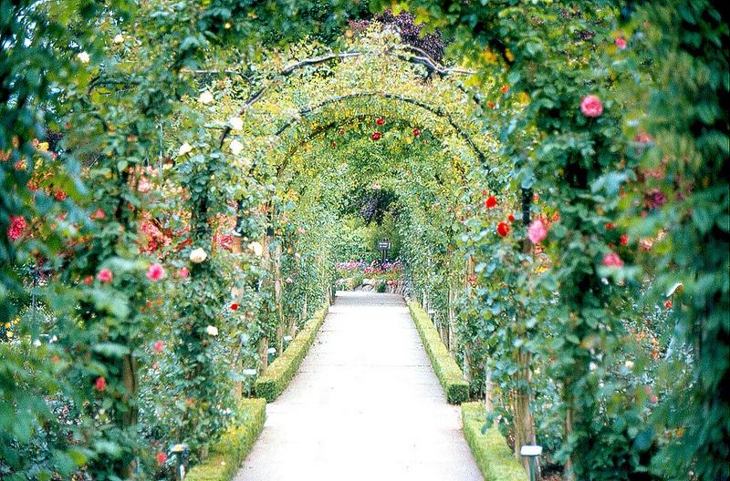 Jardins Butchart, Canada