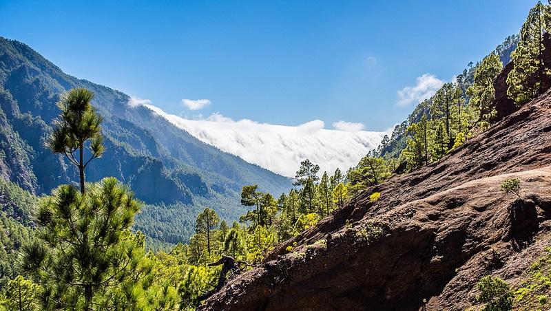 Parc national Caldeira de Taburiente, La Palma