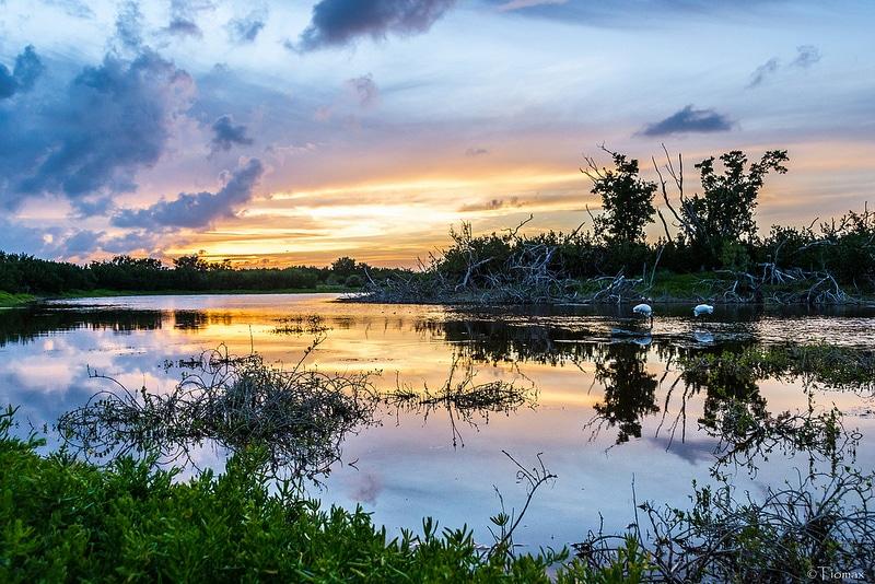 Loger dans le parc des Everglades