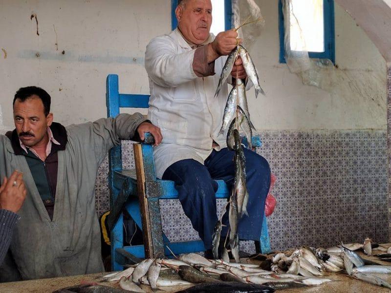La criée aux poissons, Djerba