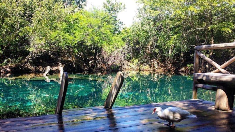 Indigenous Eyes Ecological Reserve, Punta Cana