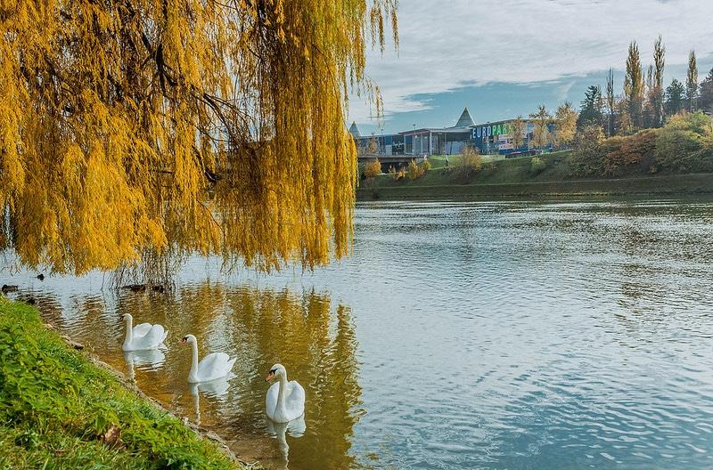 Krajinski Park Drava, Maribor