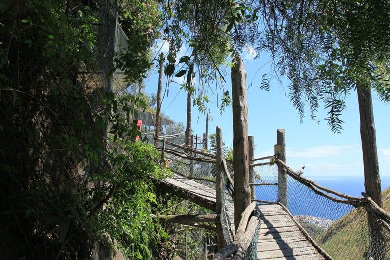 Maroparque, zoo, La Palma, Canaries