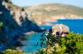 Dans quelle ville loger à Patmos ?