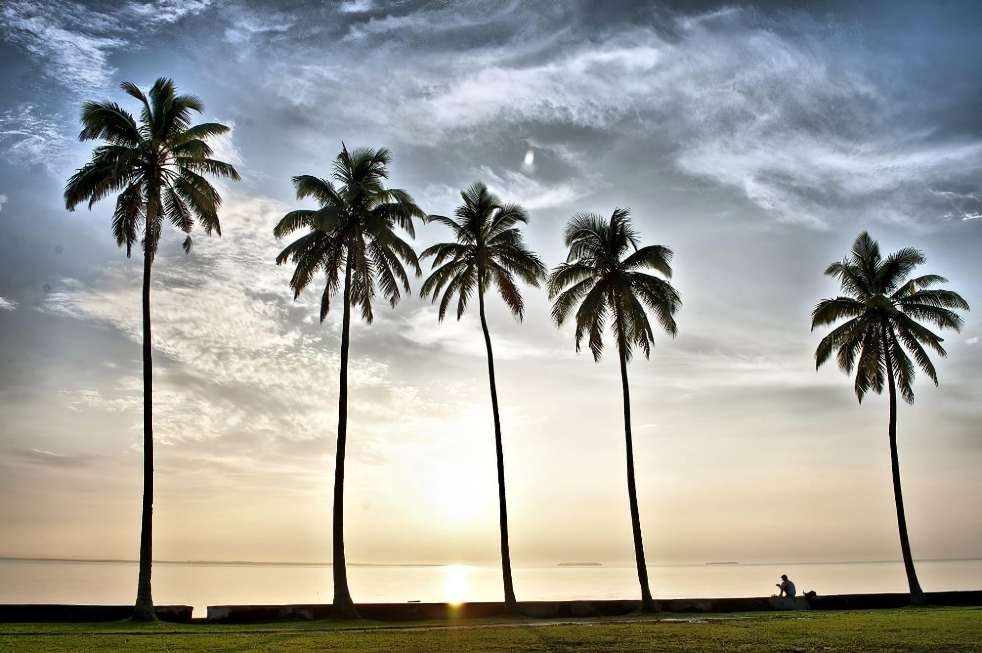 Loger à Suva