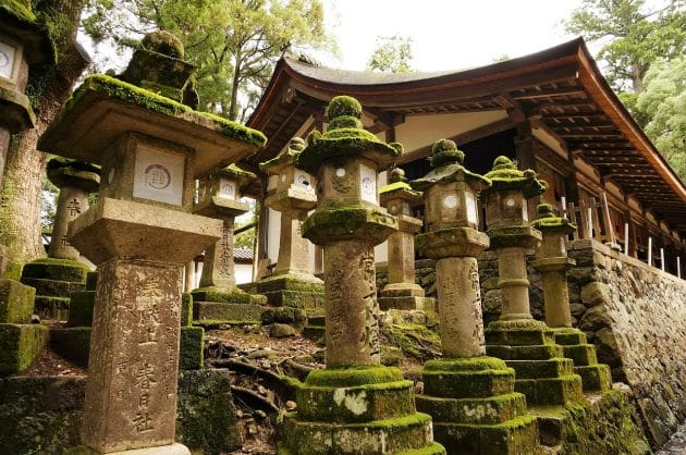 Les 10 choses incontournables à faire à Nara