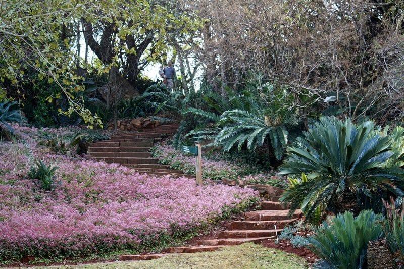 Jardin botanique national, Pretoria