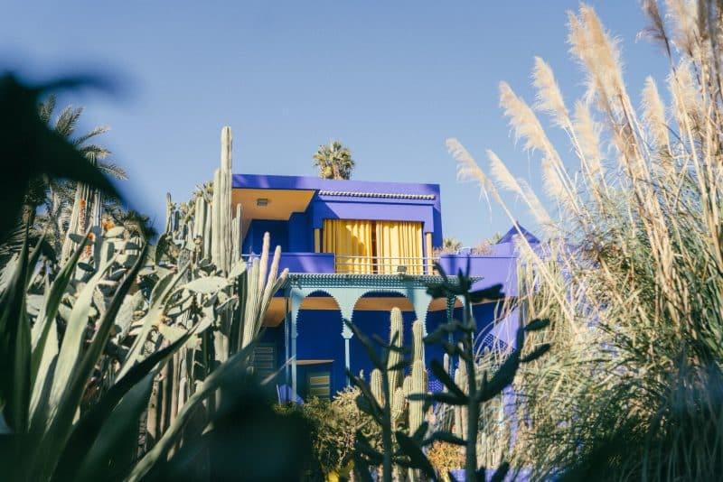 Que voir et que faire au Jardin Majorelle à Marrakech ?
