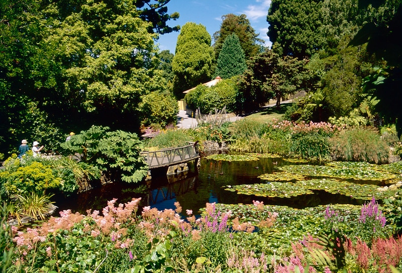 Royal Tasmanian Botanical Gardens, Hobart