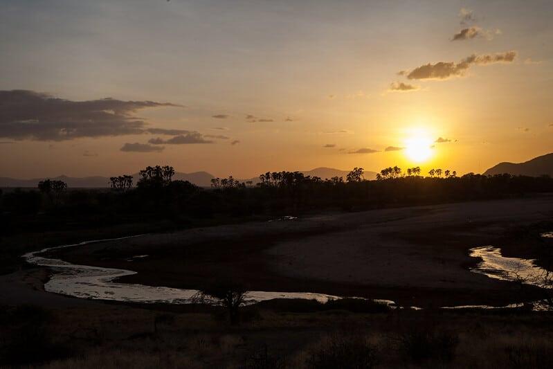 Réserve de Samburu, Kenya
