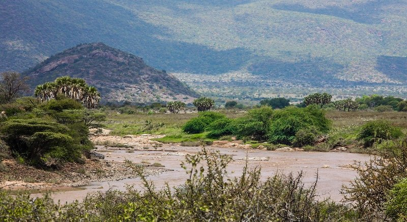 Réserve nationale de Shaba, Isiolo, Kenya