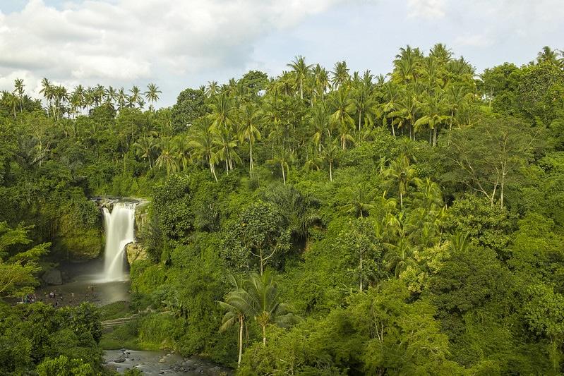 Cascade Tegenungan, Bali