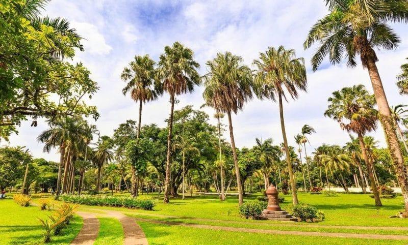 Thurston Gardens, Suva, Îles Fidji