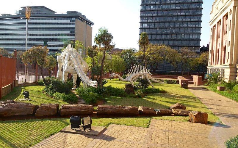 Musée du Transvaal, Pretoria