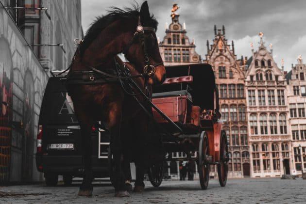 Les 12 choses incontournables à faire à Anvers